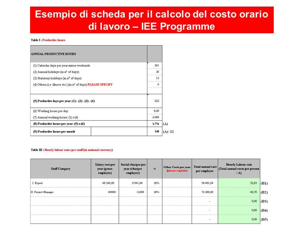 Esempio di scheda per il calcolo del costo orario di lavoro – IEE Programme