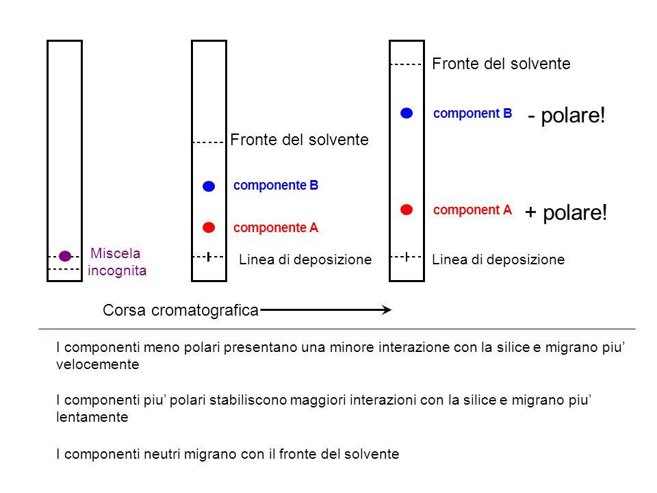 I componenti meno polari presentano una minore interazione con la silice e migrano piu velocemente I componenti piu polari stabiliscono maggiori inter