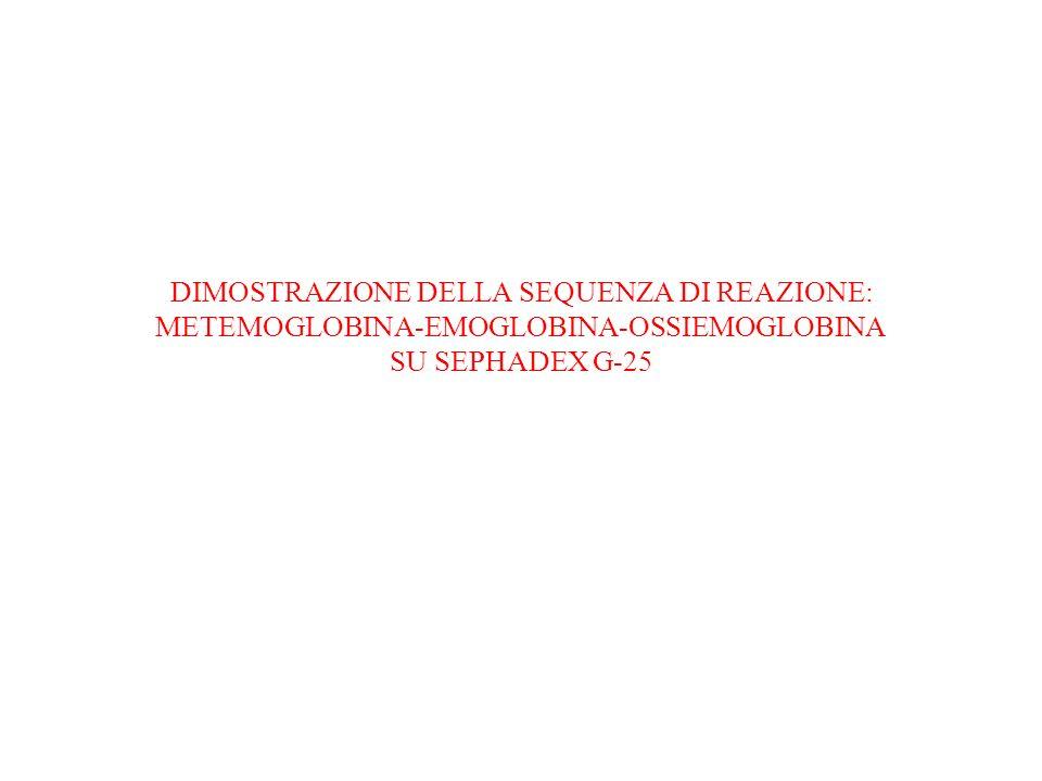 DIMOSTRAZIONE DELLA SEQUENZA DI REAZIONE: METEMOGLOBINA-EMOGLOBINA-OSSIEMOGLOBINA SU SEPHADEX G-25