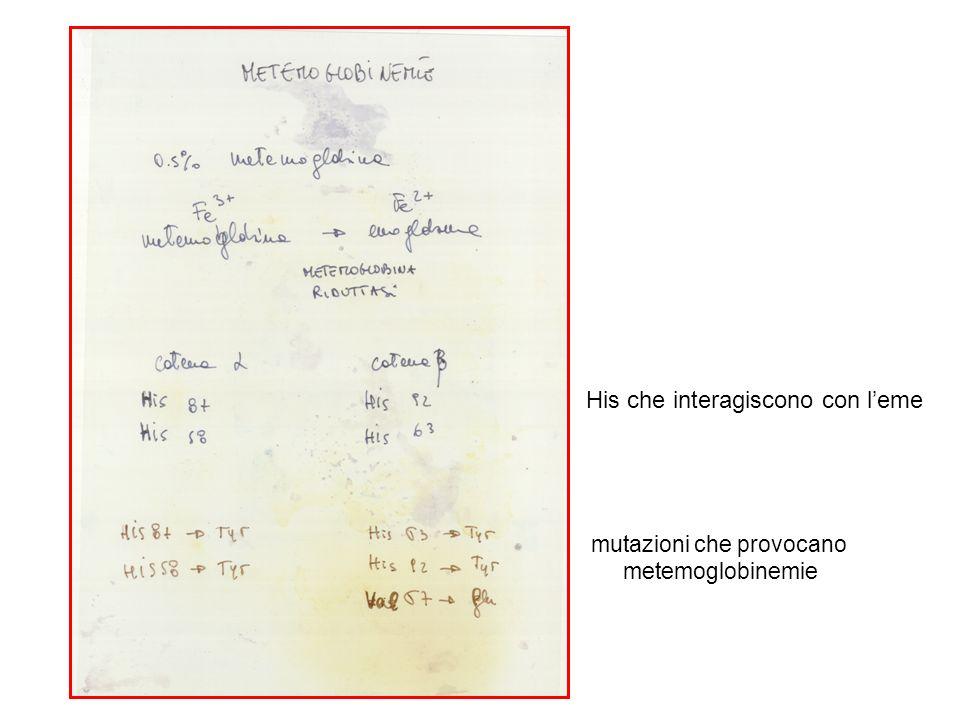 His che interagiscono con leme mutazioni che provocano metemoglobinemie