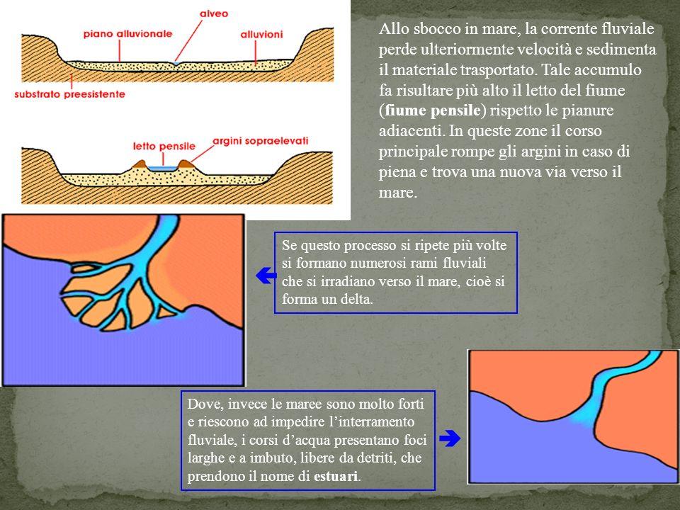 20 Allo sbocco in mare, la corrente fluviale perde ulteriormente velocità e sedimenta il materiale trasportato. Tale accumulo fa risultare più alto il