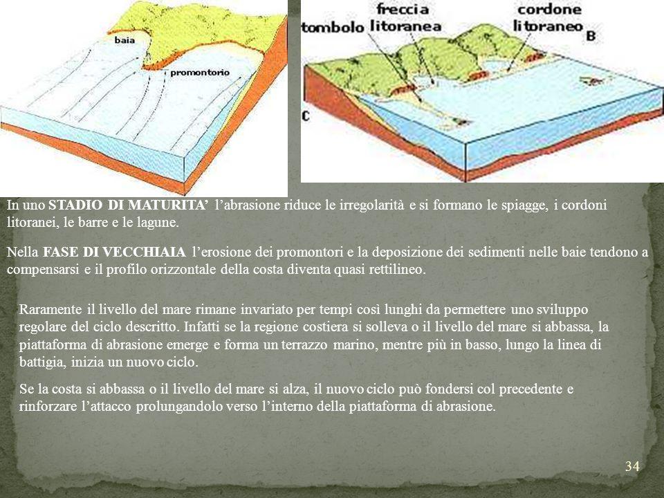 34 In uno STADIO DI MATURITA labrasione riduce le irregolarità e si formano le spiagge, i cordoni litoranei, le barre e le lagune. Nella FASE DI VECCH