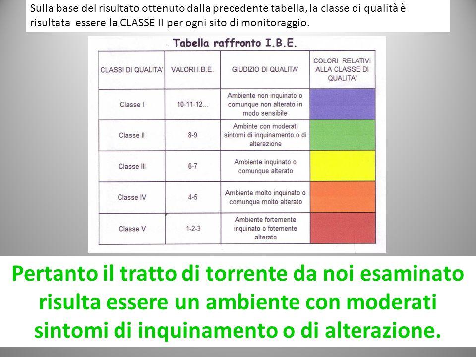 Sulla base del risultato ottenuto dalla precedente tabella, la classe di qualità è risultata essere la CLASSE II per ogni sito di monitoraggio. Pertan
