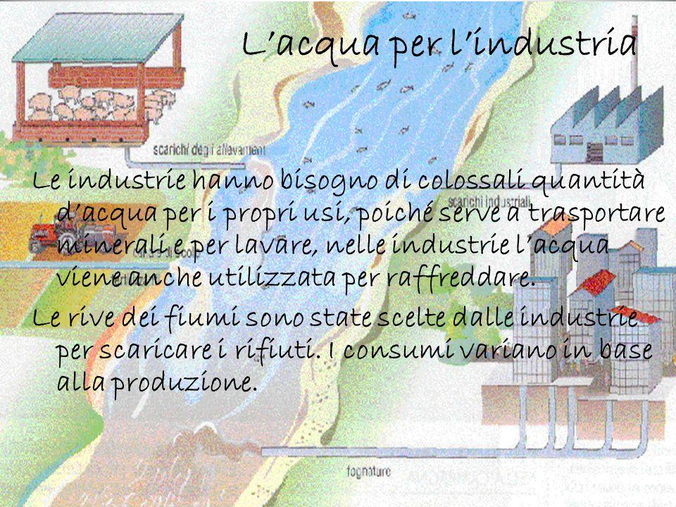 Lacqua per lindustria Le industrie hanno bisogno di colossali quantità dacqua per i propri usi, poiché serve a trasportare minerali e per lavare, nell