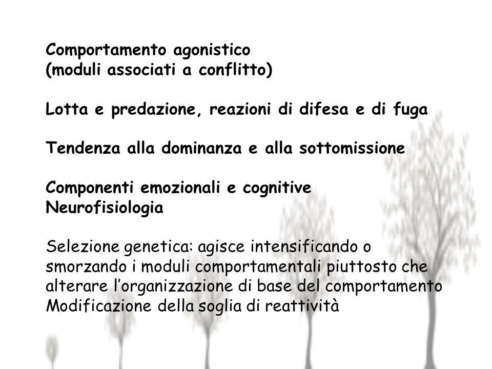 Comportamento agonistico (moduli associati a conflitto) Lotta e predazione, reazioni di difesa e di fuga Tendenza alla dominanza e alla sottomissione