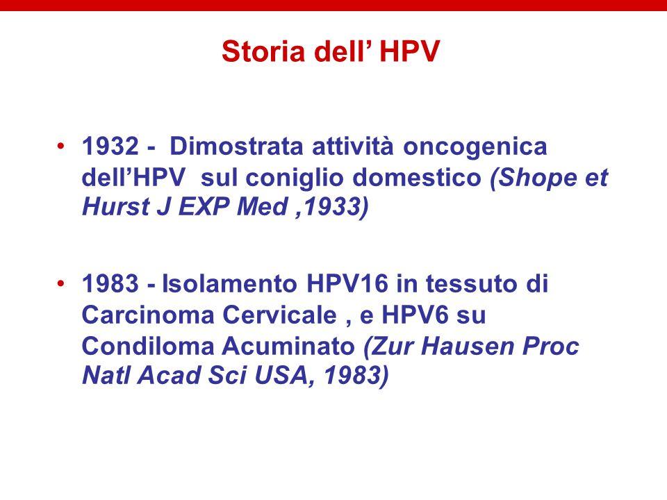 Prevalenza HPV in Italia popolazione generale (1990-2004): Torino 1025 donne 25-70 anniprevalenza 8,8% screening Brescia 1500 donne 18-63 anni prevalenza 6,6% controlli ginecologici Genova 503 donne screeningprevalenza 15,9% Roma 753 donne 17-57 anniprevalenza 18,3% controlli ginecologici donne con citologia anormale (1995-01): Vicenza 15-60 anni prevalenza 35,3% Catania prevalenza 53,9% donne con CIN2+ (2000-01): Firenze prevalenza 97,5%