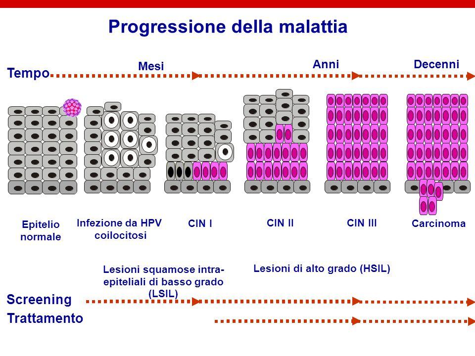 IL CARCINOMA DELLA CERVICE E UN ESITO RARO DI UN INFEZIONE COMUNE Linfezione persistente con HPV oncogeni è la condizione necessaria per levoluzione a carcinoma.