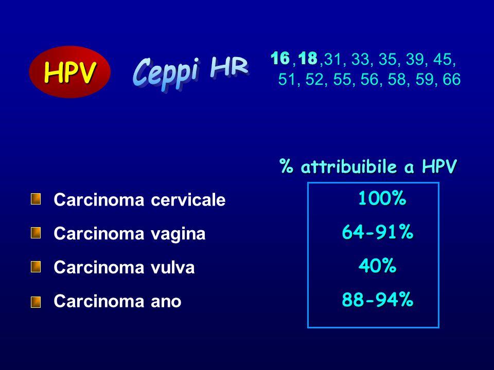 % attribuibile a HPV 40% 88-94% 100% 100% HPV Carcinoma vagina Carcinoma vulva Carcinoma ano,,31, 33, 35, 39, 45, 51, 52, 55, 56, 58, 59, 66 64-91% Ca