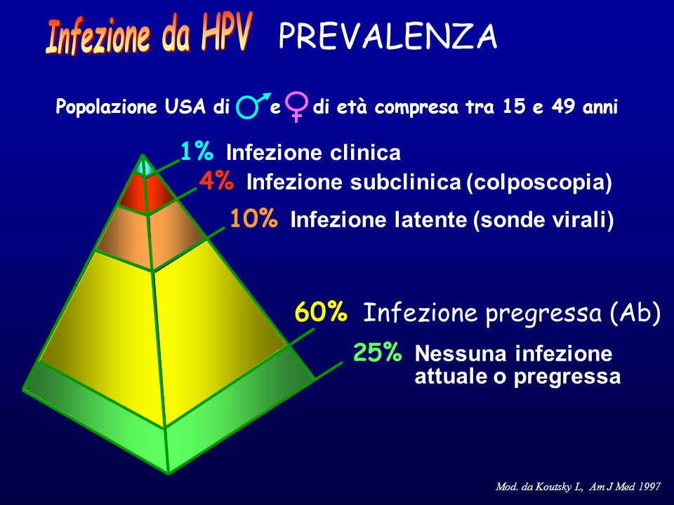 Mod. da Koutsky L, Am J Med 1997 1% Infezione clinica 4% Infezione subclinica (colposcopia) 10% Infezione latente (sonde virali) 60% Infezione pregres