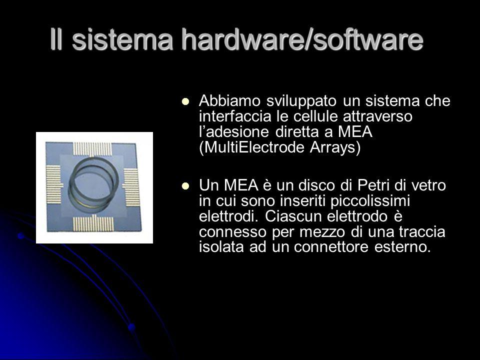 Il sistema hardware/software Abbiamo sviluppato un sistema che interfaccia le cellule attraverso ladesione diretta a MEA (MultiElectrode Arrays) Un ME