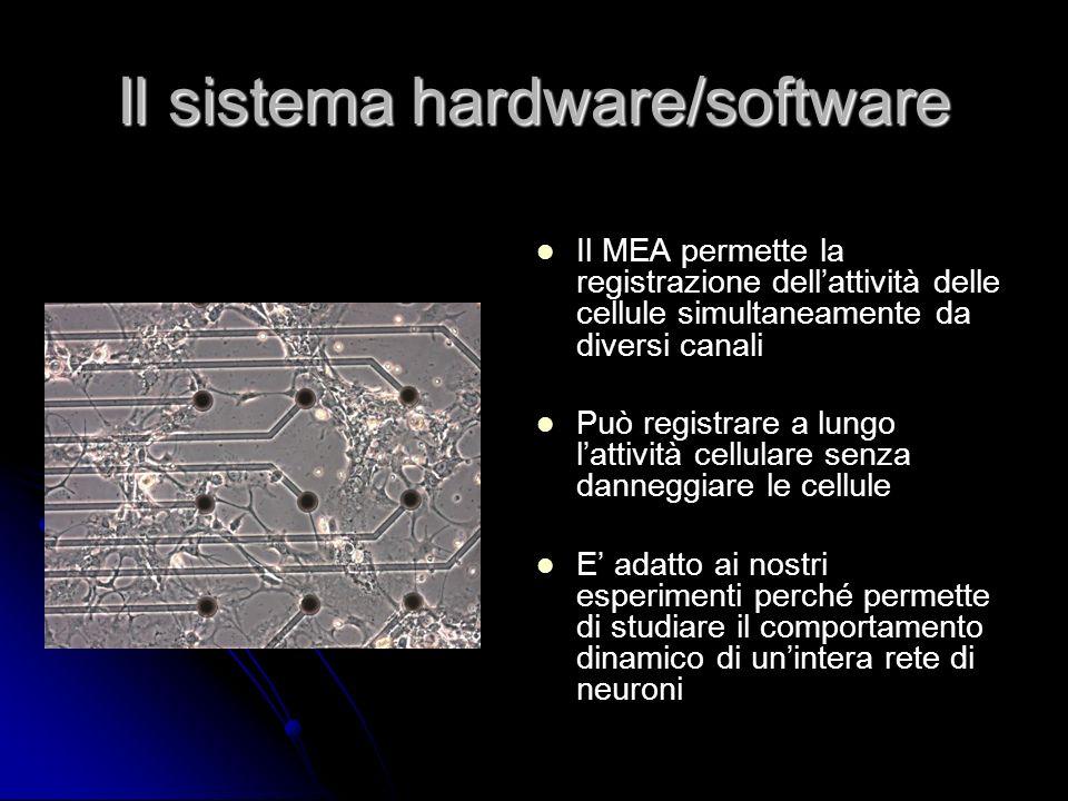 Il sistema hardware/software Il MEA permette la registrazione dellattività delle cellule simultaneamente da diversi canali Può registrare a lungo latt