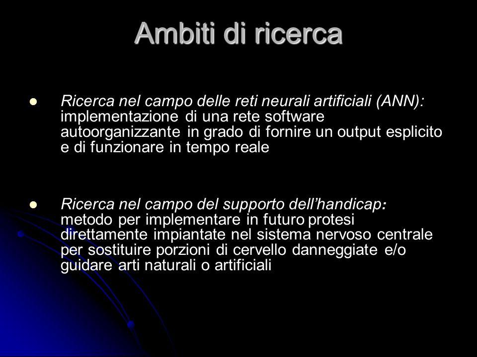 Ricerca nel campo delle reti neurali artificiali (ANN): implementazione di una rete software autoorganizzante in grado di fornire un output esplicito