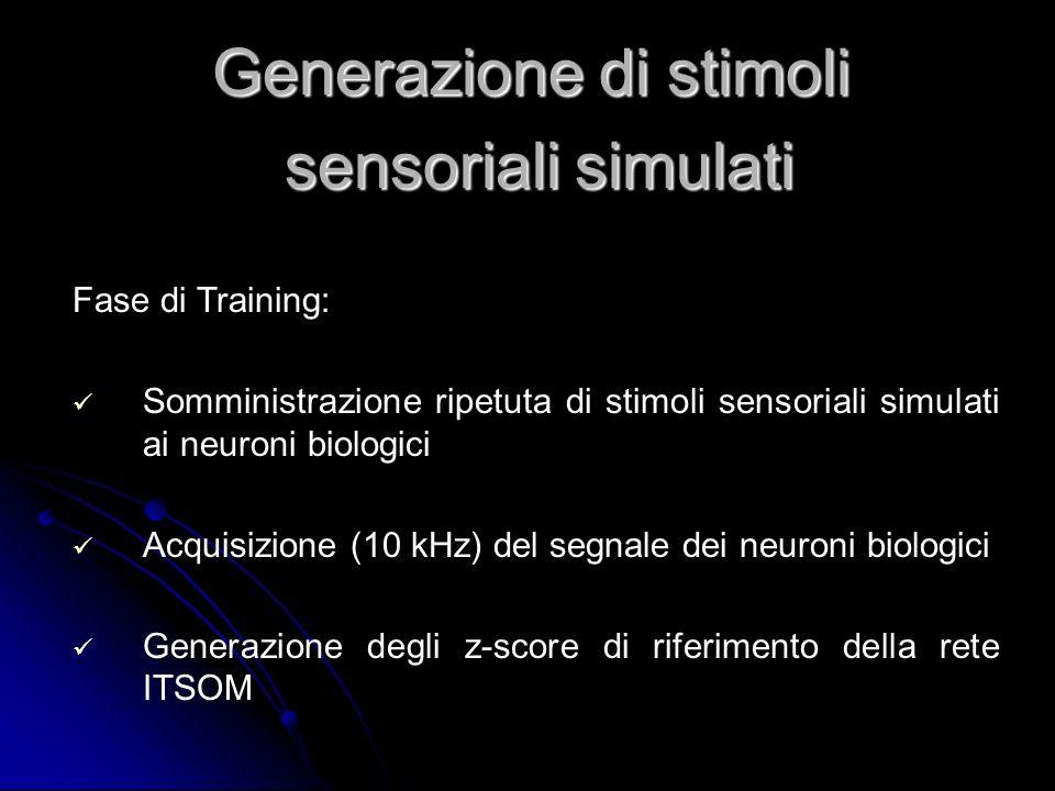 Fase di Training: Somministrazione ripetuta di stimoli sensoriali simulati ai neuroni biologici Acquisizione (10 kHz) del segnale dei neuroni biologic