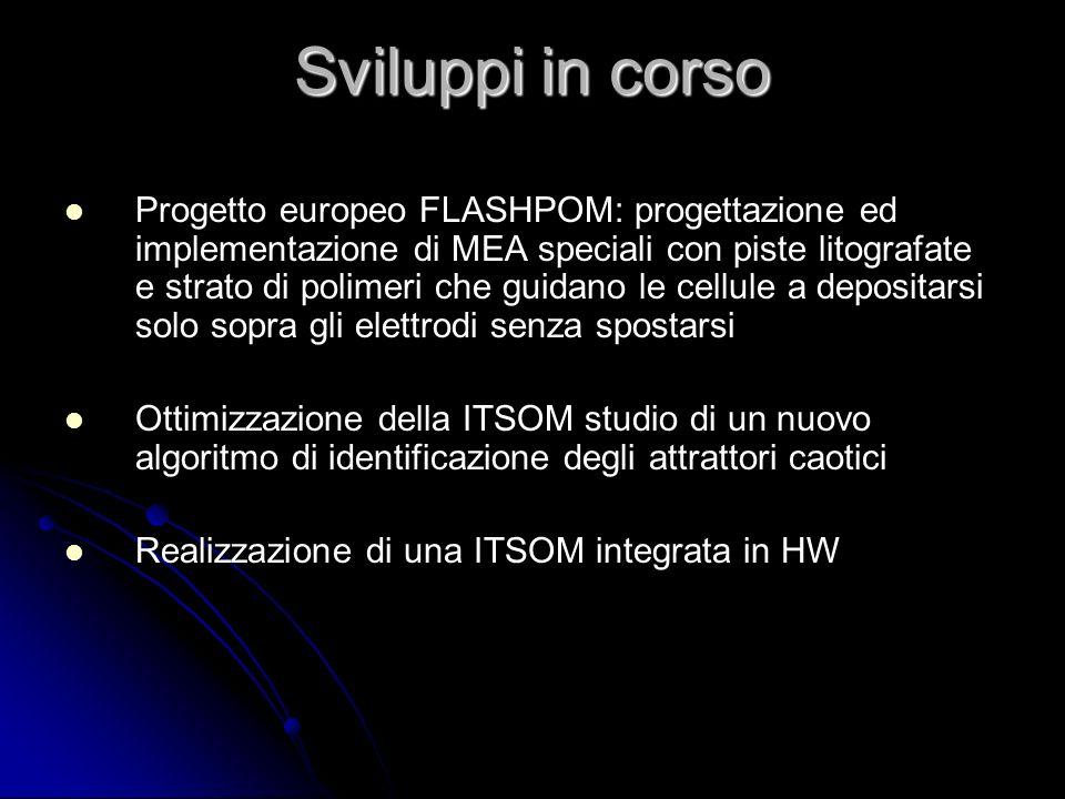 Sviluppi in corso Progetto europeo FLASHPOM: progettazione ed implementazione di MEA speciali con piste litografate e strato di polimeri che guidano l