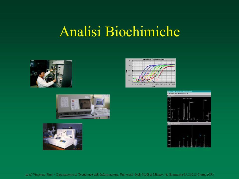 prof. Vincenzo Piuri – Dipartimento di Tecnologie dellInformazione, Università degli Studi di Milano, via Bramante 65, 26013 Crema (CR) Analisi Biochi