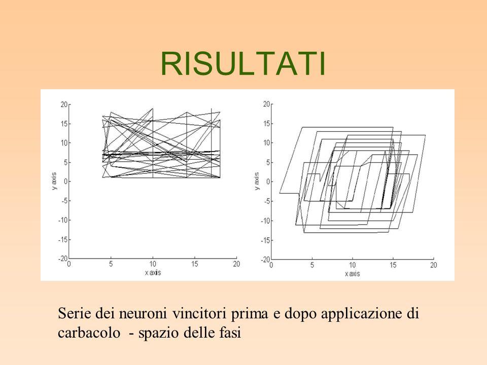 RISULTATI Serie dei neuroni vincitori prima e dopo applicazione di carbacolo - spazio delle fasi