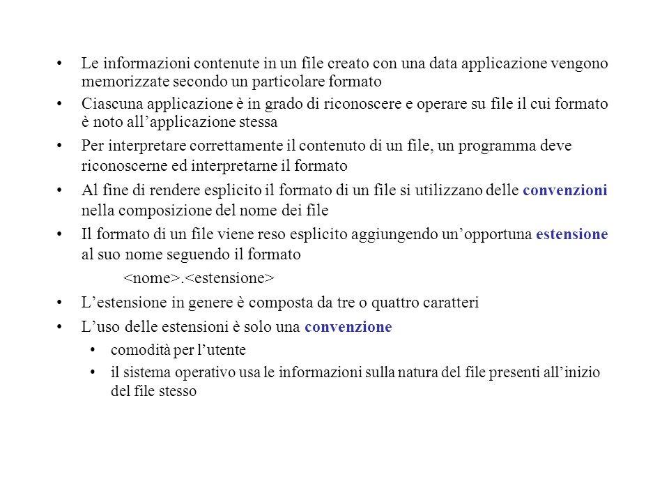 Le informazioni contenute in un file creato con una data applicazione vengono memorizzate secondo un particolare formato Ciascuna applicazione è in gr
