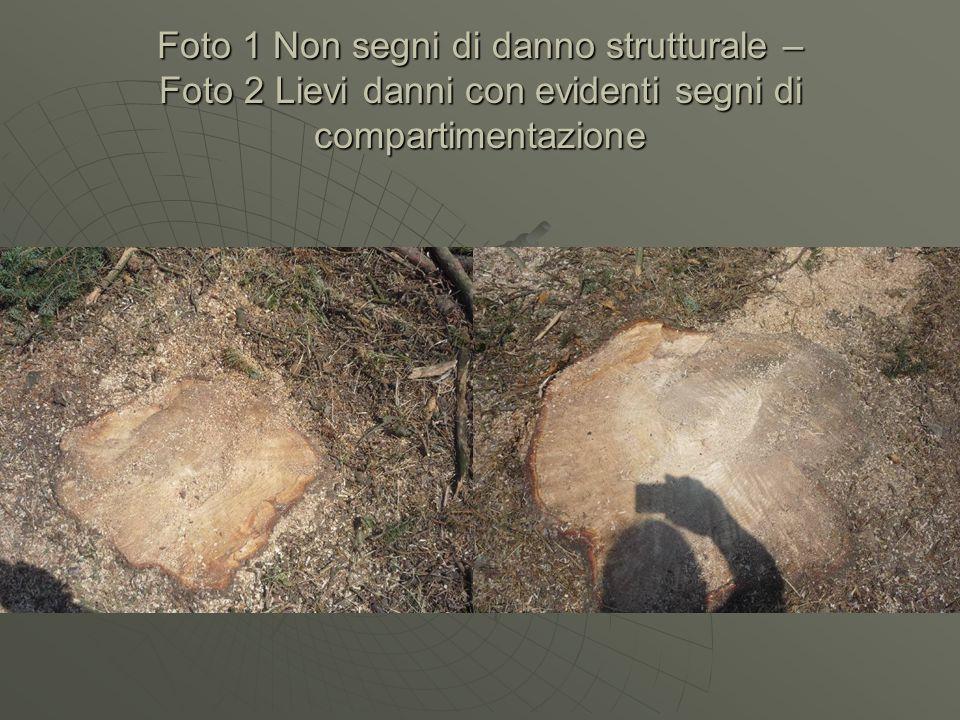 Foto 1 Non segni di danno strutturale – Foto 2 Lievi danni con evidenti segni di compartimentazione