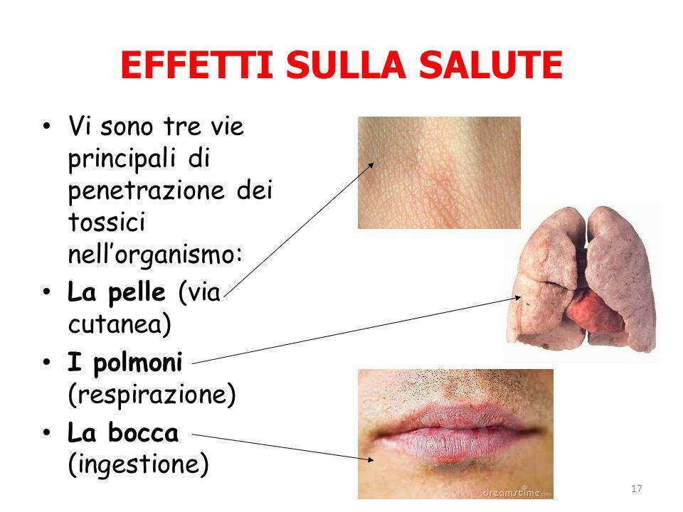 EFFETTI SULLA SALUTE Vi sono tre vie principali di penetrazione dei tossici nellorganismo: La pelle (via cutanea) I polmoni (respirazione) La bocca (i