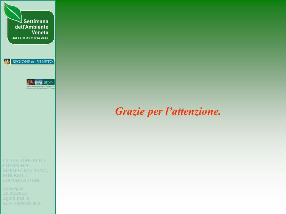 LA GESTIONE DELLE EMERGENZE AMBIENTALI: RUOLI, SINERGIE E COMUNICAZIONE Convegno 20.03.2013 Agorà pad. 8 SEP - PadovaFiere Grazie per lattenzione.