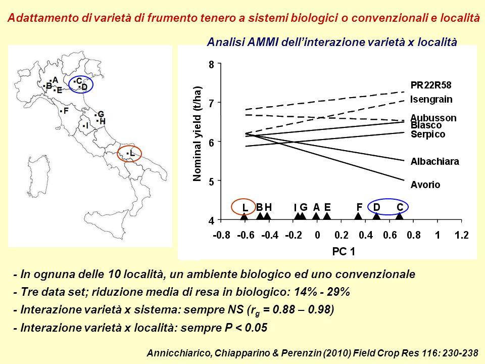 Analisi AMMI dellinterazione varietà x località per resa di varietà di favino Ambienti mediterranei Ambienti a clima sub-continentale Semina Semina autunnale tardo-inv.