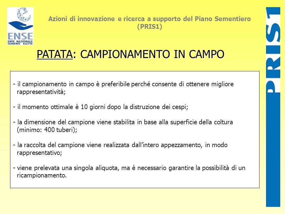 Azioni di innovazione e ricerca a supporto del Piano Sementiero (PRIS1) PATATA: CAMPIONAMENTO IN CAMPO PATATA: CAMPIONAMENTO IN CAMPO - il campionamen