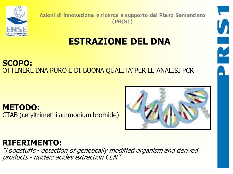 Azioni di innovazione e ricerca a supporto del Piano Sementiero (PRIS1) ESTRAZIONE DEL DNA SCOPO: OTTENERE DNA PURO E DI BUONA QUALITA PER LE ANALISI