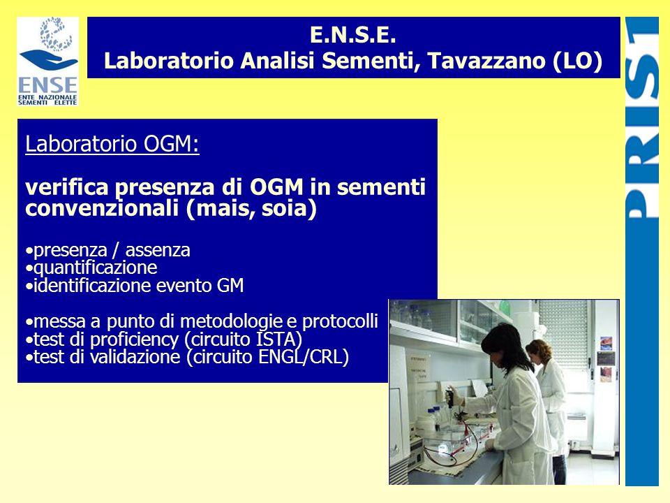 Laboratorio OGM: verifica presenza di OGM in sementi convenzionali (mais, soia) presenza / assenza quantificazione identificazione evento GM messa a p