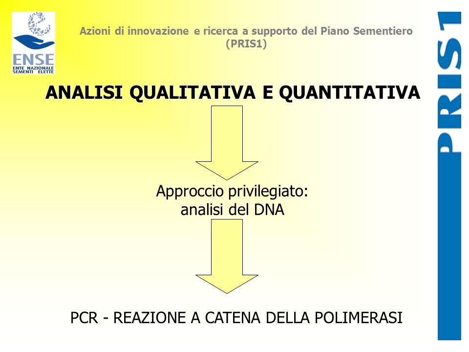 Azioni di innovazione e ricerca a supporto del Piano Sementiero (PRIS1) ANALISI QUALITATIVA E QUANTITATIVA Approccio privilegiato: analisi del DNA PCR