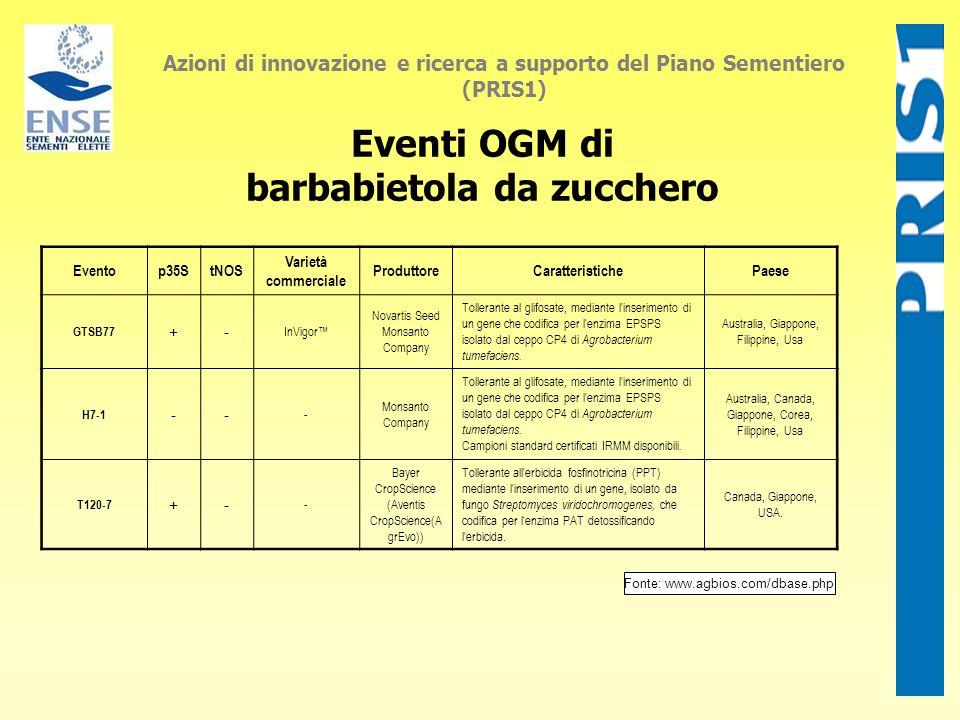 Eventi OGM di barbabietola da zucchero Azioni di innovazione e ricerca a supporto del Piano Sementiero (PRIS1) Eventop35StNOS Varietà commerciale Prod