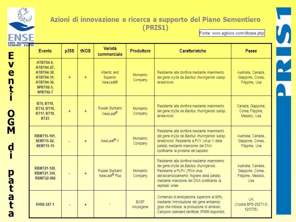 EventiOGMdi patataEventiOGMdi patata Azioni di innovazione e ricerca a supporto del Piano Sementiero (PRIS1) Eventop35StNOS Varietà commerciale Produt