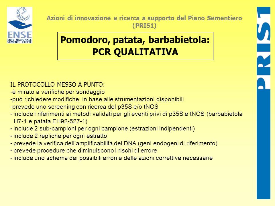 Azioni di innovazione e ricerca a supporto del Piano Sementiero (PRIS1) Pomodoro, patata, barbabietola: PCR QUALITATIVA IL PROTOCOLLO MESSO A PUNTO: -