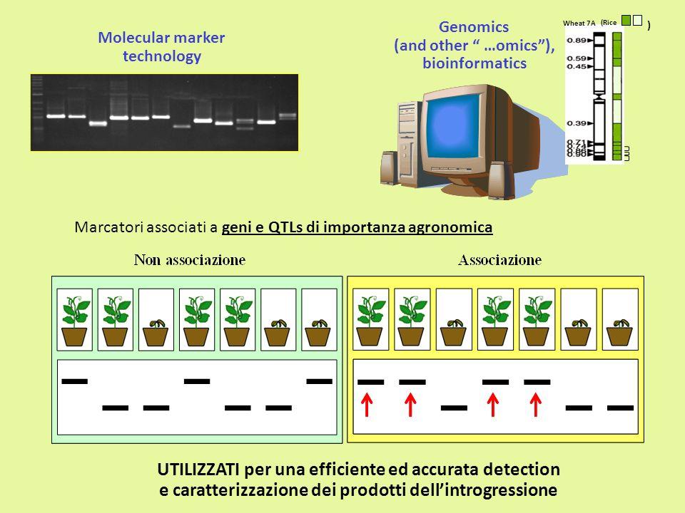 Genomics (and other …omics), bioinformatics Molecular marker technology UTILIZZATI per una efficiente ed accurata detection e caratterizzazione dei pr