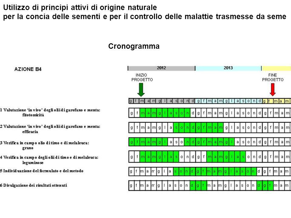Utilizzo di principi attivi di origine naturale per la concia delle sementi e per il controllo delle malattie trasmesse da seme Cronogramma