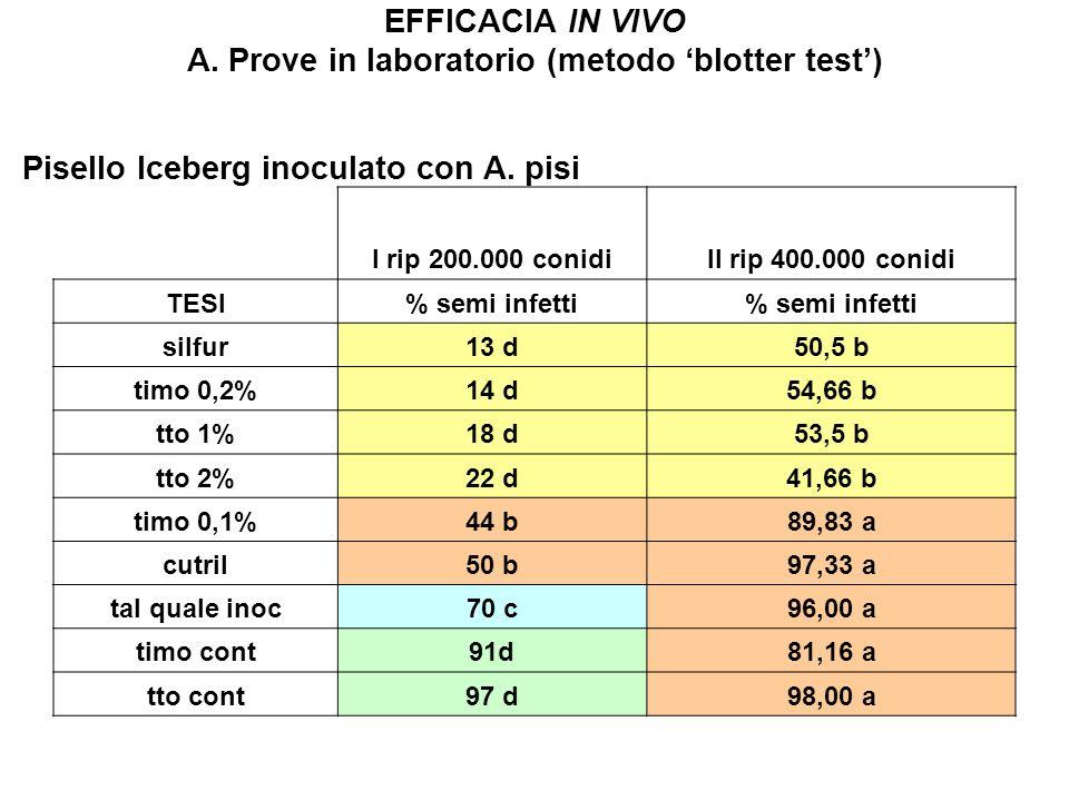 EFFICACIA IN VIVO A. Prove in laboratorio (metodo blotter test) I rip 200.000 conidiII rip 400.000 conidi TESI% semi infetti silfur13 d50,5 b timo 0,2