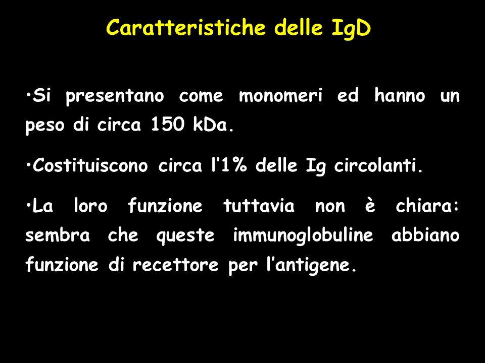 Caratteristiche delle IgD Si presentano come monomeri ed hanno un peso di circa 150 kDa. Costituiscono circa l1% delle Ig circolanti. La loro funzione