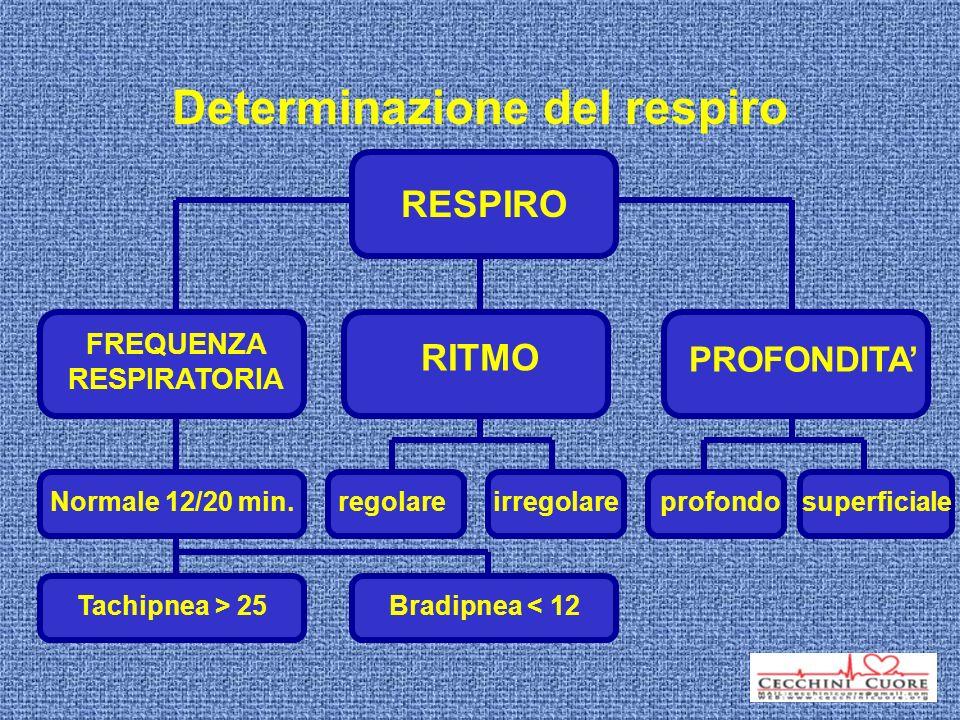 RESPIRO FREQUENZA RESPIRATORIA Normale 12/20 min. Tachipnea > 25 Bradipnea < 12 PROFONDITA profondosuperficiale RITMO irregolareregolare Determinazion