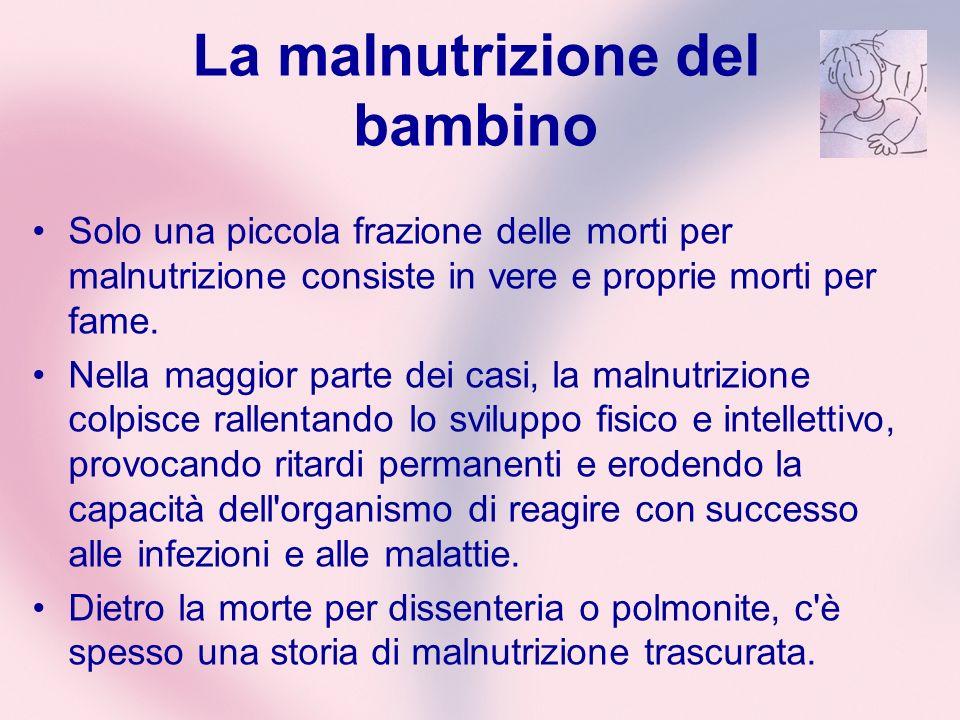 La malnutrizione del bambino Solo una piccola frazione delle morti per malnutrizione consiste in vere e proprie morti per fame. Nella maggior parte de