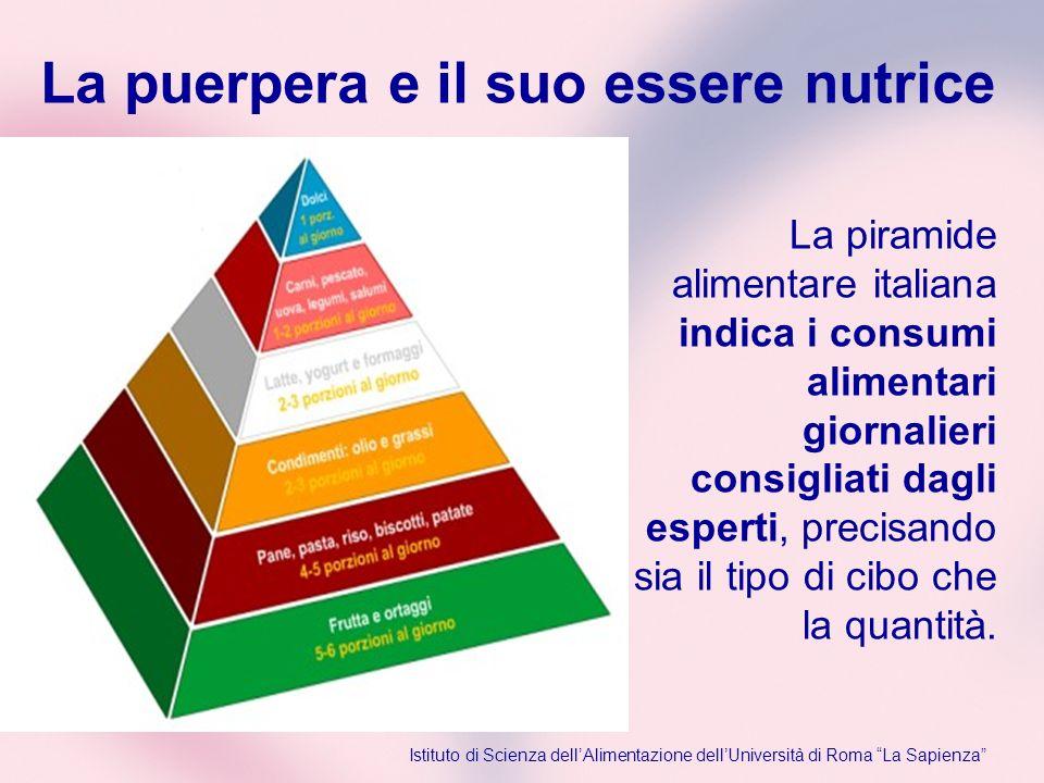 La piramide alimentare italiana indica i consumi alimentari giornalieri consigliati dagli esperti, precisando sia il tipo di cibo che la quantità. Ist