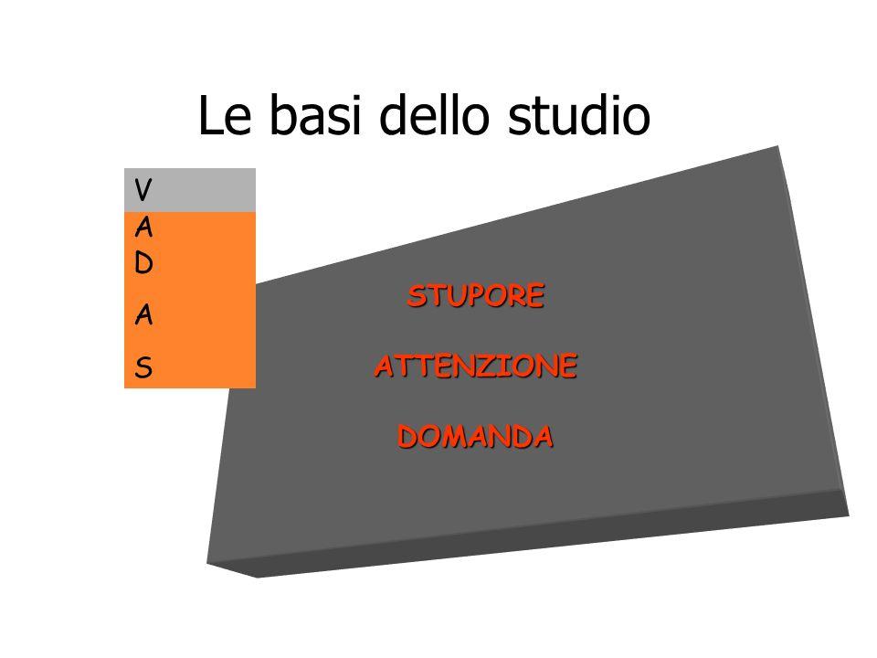 Le basi dello studio STUPOREATTENZIONEDOMANDA ADASADAS V