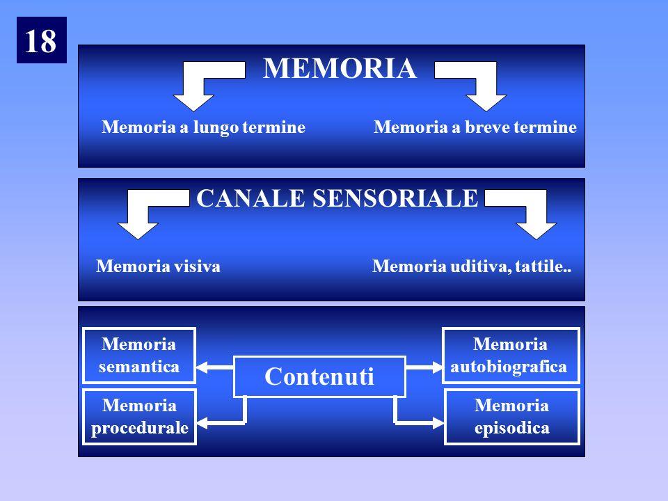 MEMORIA Memoria a lungo termine Memoria a breve termine CANALE SENSORIALE Memoria visiva Memoria uditiva, tattile.. Contenuti Memoria semantica Memori