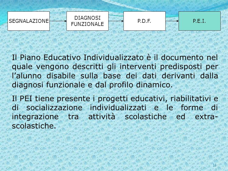 13 SEGNALAZIONE DIAGNOSI FUNZIONALE P.D.F.P.E.I. Il Piano Educativo Individualizzato è il documento nel quale vengono descritti gli interventi predisp