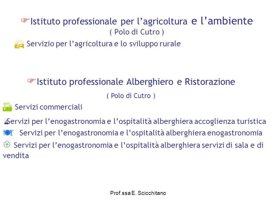 Prof.ssa E.Scicchitano Istituto professionale di stato per lindustria e lartigianato I.P.S.I.A.