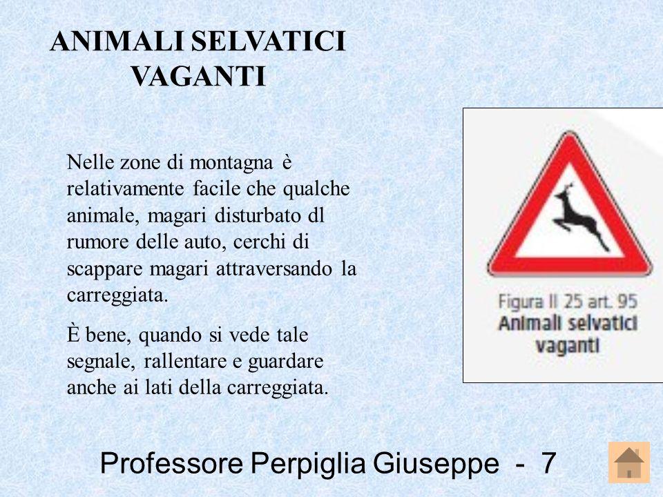 Professore Perpiglia Giuseppe - 8 Nelle zone di montagna è relativamente facile che qualche animale, magari disturbato dl rumore delle auto, cerchi di scappare magari attraversando la carreggiata.