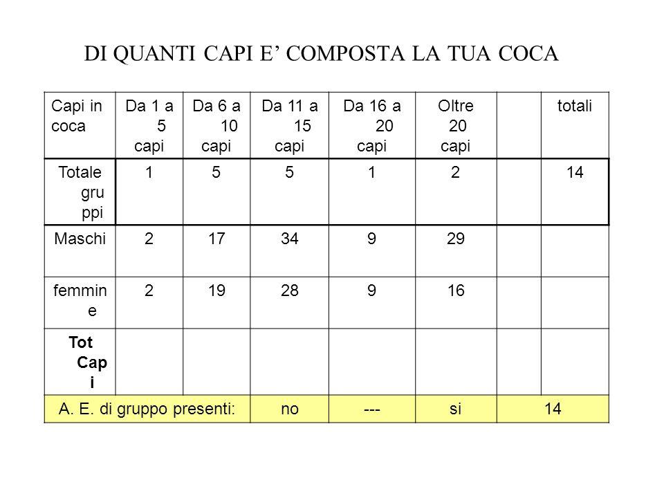 DI QUANTI CAPI E COMPOSTA LA TUA COCA Capi in coca Da 1 a 5 capi Da 6 a 10 capi Da 11 a 15 capi Da 16 a 20 capi Oltre 20 capi totali Totale gru ppi 15