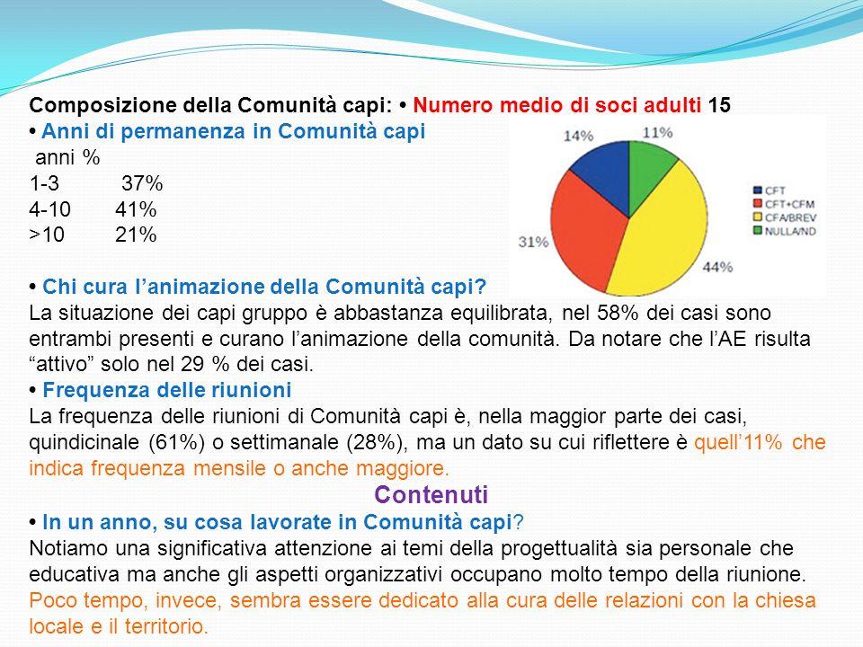 Composizione della Comunità capi: Numero medio di soci adulti 15 Anni di permanenza in Comunità capi anni % 1-3 37% 4-10 41% >10 21% Chi cura lanimazi