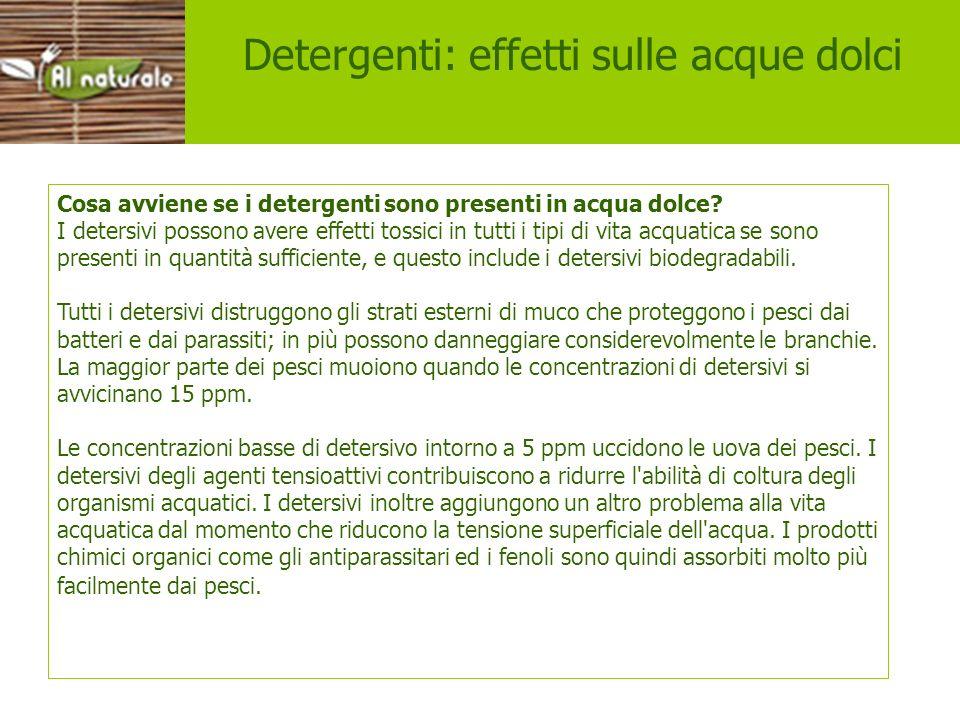 Effetti Detergenti: effetti sulle acque dolci Cosa avviene se i detergenti sono presenti in acqua dolce? I detersivi possono avere effetti tossici in