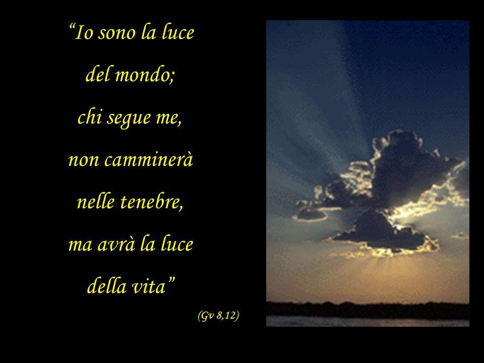 Io sono la luce del mondo; chi segue me, non camminerà nelle tenebre, ma avrà la luce della vita (Gv 8,12)