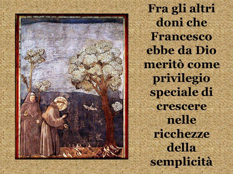Fra gli altri doni che Francesco ebbe da Dio meritò come privilegio speciale di crescere nelle ricchezze della semplicità