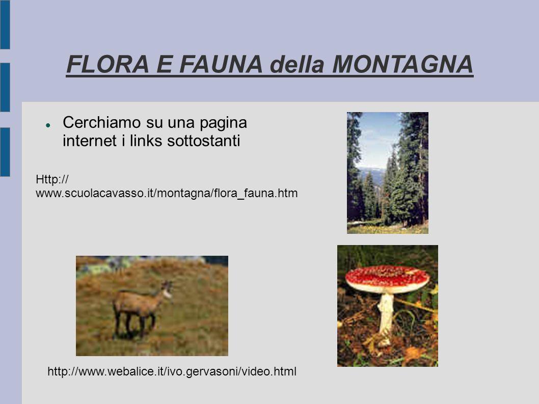 FLORA E FAUNA della MONTAGNA Cerchiamo su una pagina internet i links sottostanti Http:// www.scuolacavasso.it/montagna/flora_fauna.htm http://www.web